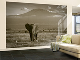 Elephant, Mt. Kilimanjaro, Masai Mara National Park, Kenya Wall Mural – Large by Peter Adams