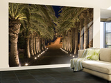 Palm-Lined Path and Pier at Night Wall Mural – Large by Holger Leue