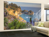 Mcway Falls at Julia Pfieffer Burns State Park Near Big Sur, California, USA Wall Mural – Large por Chuck Haney