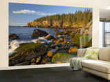 Polished Rocks at Otter Cliffs, Acadia National Park, Maine, USA Wall Mural – Large by Chuck Haney