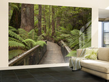 Footpath Through Forest To Newdegate Cave, Hastings Caves State Reserve, Tasmania, Australia Wall Mural – Large by David Wall