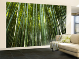 Bamboo Forest, Arashiyama-Sagano District Vægplakat, stor af Greg Elms