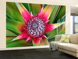 Young Pineapple Plant in Golf Dulce Area Reproduction murale (géante) par Douglas Steakley
