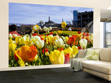 Tulips on Pier 39 with Coit Tower in the Background. Wall Mural – Large by Christina Lease