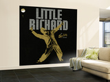 Little Richard - The Specialty Sessions Wall Mural – Large