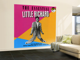 The Essential Little Richard Wall Mural – Large