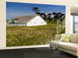 Historic Farm House Surrounded by Wildflowers at End of Pierce Point Road Wall Mural – Large by Emily Riddell