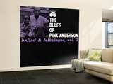 Pink Anderson - Ballad and Folk Singer, Vol. 3 Wall Mural – Large