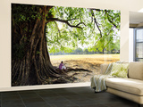 Man Sitting under a Banyan Tree Wall Mural – Large by Felix Hug