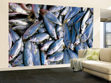 Fresh Fish for Sale on Ferry Dock Near Gallata Bridge Wall Mural – Large by Dallas Stribley