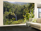 Waterfall and Rainforest Wall Mural – Large by Christer Fredriksson