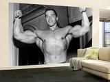 Arnold Schwarzenegger Wall Mural – Large