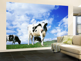 Cows in Field, Lake District, England, United Kingdom Wall Mural – Large