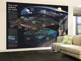 1970 How Man Pollutes His World Wall Mural – Large by  National Geographic Maps