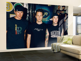 Blink 182 Wall Mural – Large
