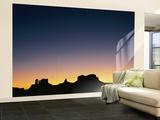 Sunset Silhouetting the Desert Landscape Wall Mural – Large by Rich Reid
