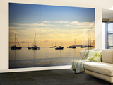 Boats in Airlie Bay at Dawn Wall Mural – Large by Tim Barker