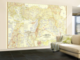1956 Lands of the Bible Today Map Wall Mural – Large