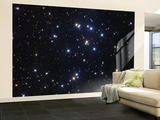 The Beehive Cluster Wall Mural – Large