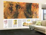 1978 Grand Canyon of Colorado Map Wall Mural – Large