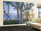 Snowgums at Navarre Plains, South of Lake St Clair Wall Mural  Large by Rob Blakers