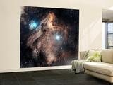 Pelican Nebula Wall Mural – Large