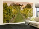 Vineyard Wall Mural – Large by Richard Nebesky