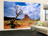 Monument Valley Wall Mural – Large by Douglas Steakley