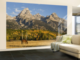Horses and the Teton Range Wall Mural – Large by Douglas Steakley