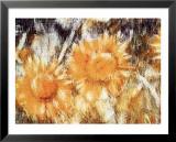 Sonnenblumen Kunstdrucke von Christian Rohlfs
