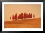 Sunset, Tuscany Prints by W. Krecichwost