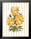 Striped Botanical Pansy Art par Jerianne Van Dijk