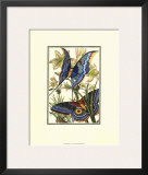Butterfly V Print by William Henry Pearson