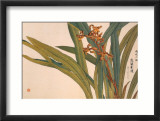 Brown Orchids Art by Kosikose