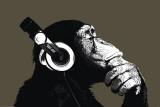 Le chimpanzé-stéréo Posters