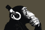 Scimpanzé che ascolta lo stereo Poster