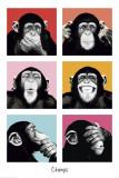 Les chimpanzés pop art Affiche