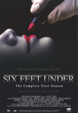 Six Feet Under Ensivedos