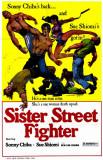 Sister Streetfighter Masterprint