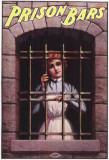Prison Bars Masterprint