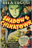 Shadow of Chinatown Masterprint