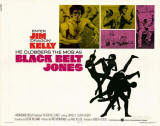 Black Belt Jones Masterprint
