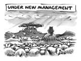 """Under New Management.""  A cat overlooks sheep grazing. - New Yorker Cartoon Premium Giclee Print by Lee Lorenz"