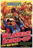 Wild Horse Round Masterprint