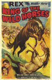 King of the Wild Horses Masterprint
