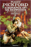Romance of the Redwoods Masterprint