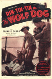 Wolf Dog Masterprint