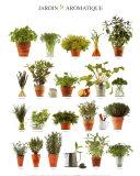 Duftende urtehave, på fransk Plakater