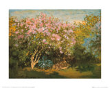 Blossoming Lilac in the Sun, c.1873 Poster por Claude Monet