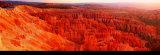 Bryce Canyon Poster von Alain Thomas
